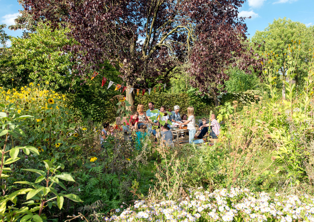 Kenniscafé wateropvang in de tuin