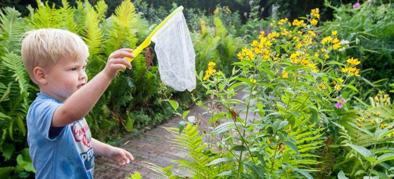 Plant4daagse: workshop Een levende tuin maak je zelf