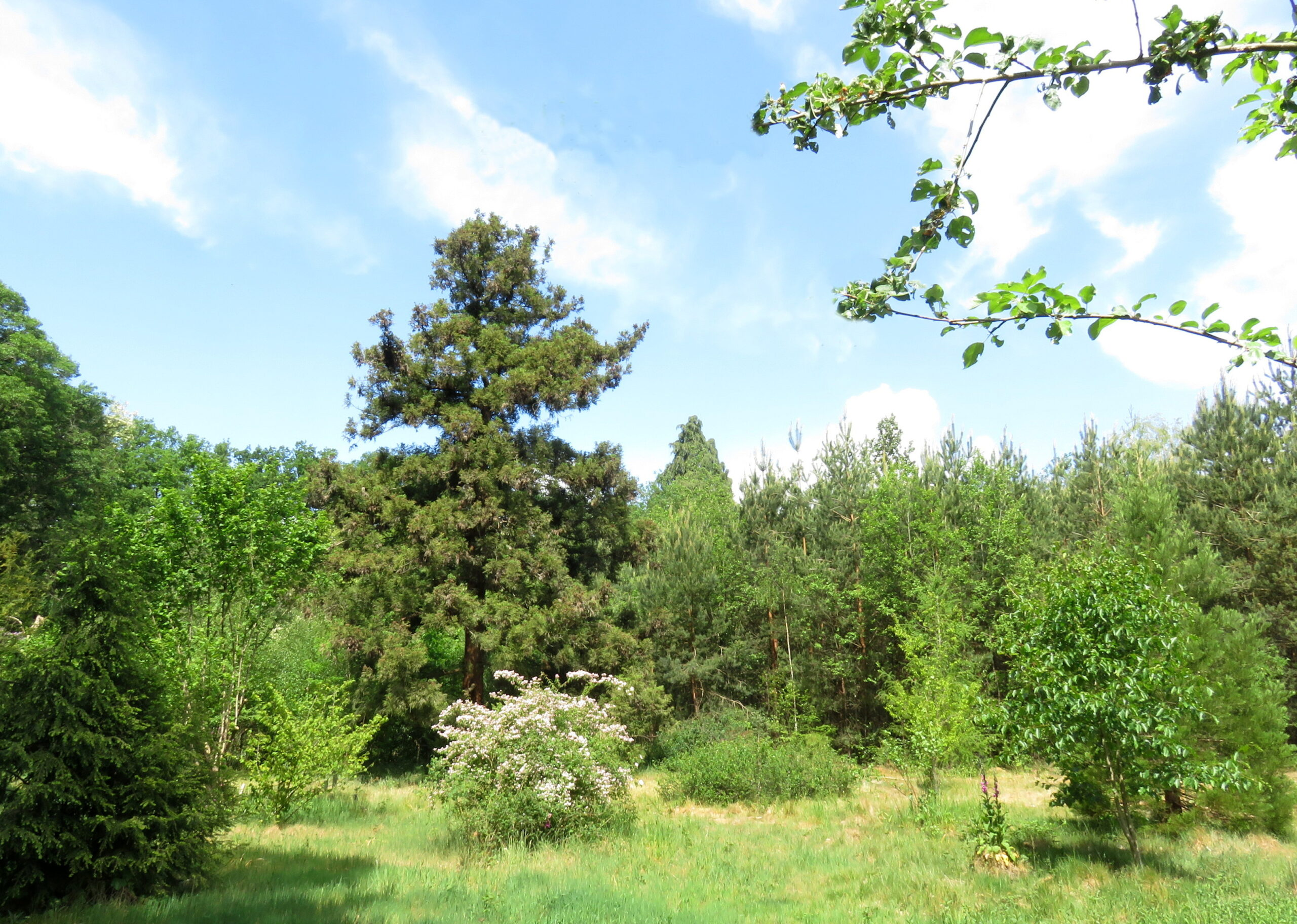KNNV Natuurwandeling landgoed Oostereng