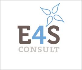 logo E4S Consult